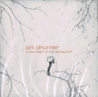 Ori Drumer ?– In The Heart Of The Dozing Pool